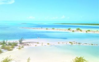 Paradise Iguana Island in the Turks and Caicos